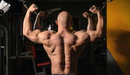 リアデルトを鍛えてたくましい肩へ|トレーニング方法やポイントを徹底解説