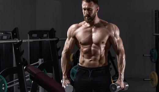 プランクを毎日続けて腹筋を鍛えよう!|具体的なトレーニング方法や頻度などをご紹介!