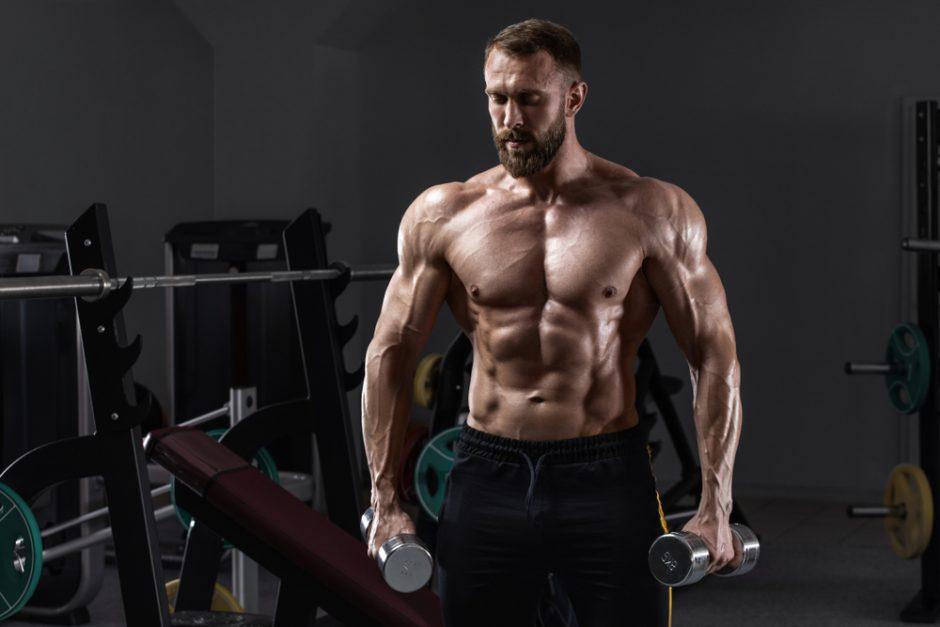 腹筋ローラー 背筋力