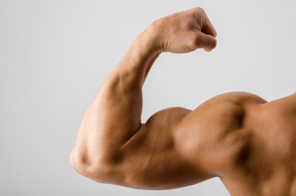 腕の筋肉を見せる