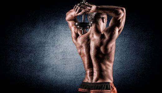 腹筋ローラーは腹筋だけでなく背筋も効果が!腹筋ローラーで背筋を鍛える方法