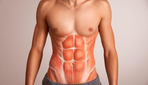 プランクで割れた腹筋を手に入れる!誰でも簡単に腹筋を鍛えることができるプランクを解説!