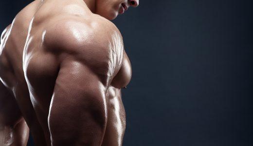 上腕二頭筋を自重で鍛えよう|トレーニング方法からアフターケアまで1から解説